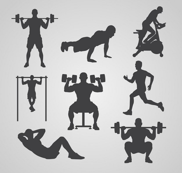 gym-silhouettes-collection 23-2147519165